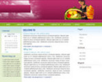 Thumbnail Make Money Online With This Diet WordPress Theme v3.0